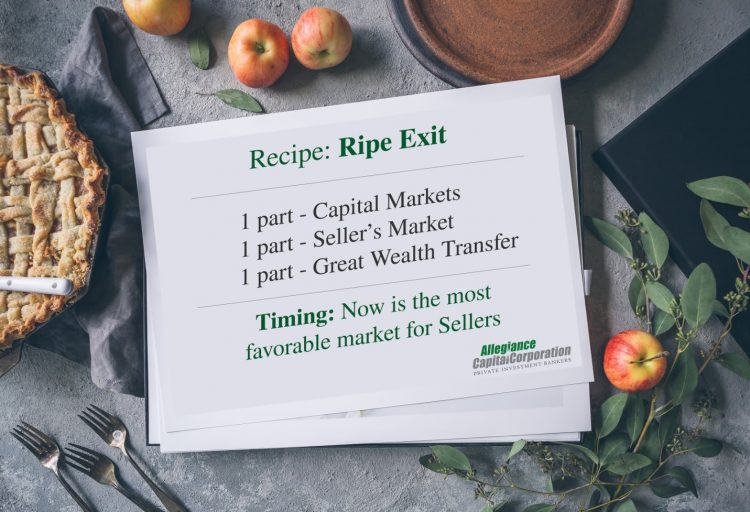 recipe for ripe M&A exit